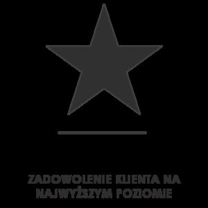 star-600px-grey