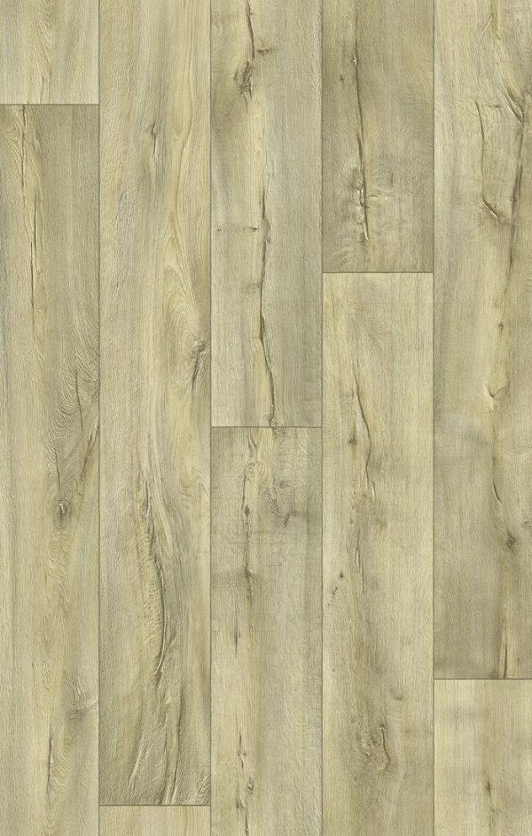 Cracked Oak 169M_