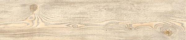 Coast Wood - 24162